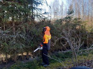 Metsänhoitopalvelut ammattitaidolla ja sovitun aikataulun mukaan - sen Tekee Heke!