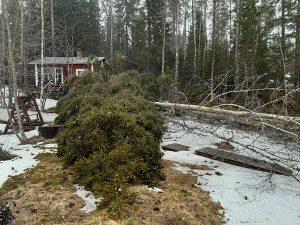 Pihapuunkaatopalvelut Varkauden seudulla - sen Tekee Heke myös vapaa-ajanasunnoilla!